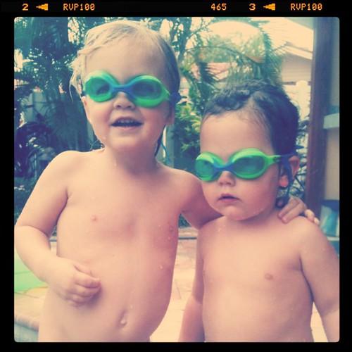 fish cousins.