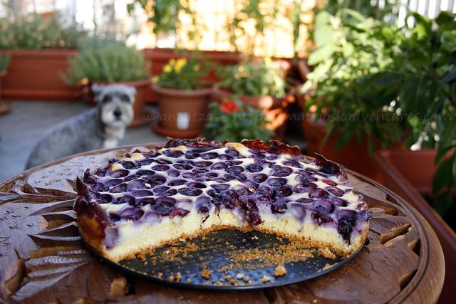 immagine Cheesecake torta soffice alla ricotta e mirtilli
