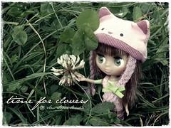 Time for clovers · Tiempo para tréboles