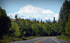Road to Denali - Mountains - Alaska (blmiers2) Tags: road travel trees mountain snow mountains green nature alaska landscape nikon denali d3100 roadtodenali blm18 blmiers2