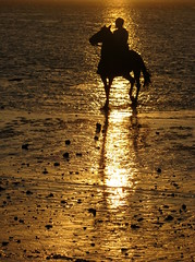 Carreras de Caballos en la playa (Guervs) Tags: sunset espaa horse orange beach backlight feast contraluz caballo atardecer seaside andaluca spain fiesta playa cadiz backlit cdiz naranja carreras horseride sanlucar barrameda galleryoffantasticshots
