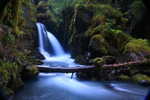 [フリー画像] 自然・風景, 滝, 森林, 201109140700