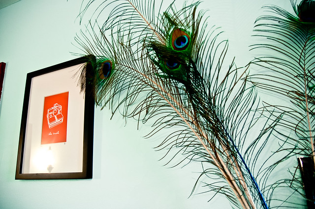 Peacock feathers and Polaroid Print