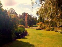 The Water Garden (tedesco57) Tags: uk tree water club garden lawn stump berkshire cookham ondey