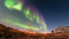 Full Moon Aurora (5) (savillent) Tags: new sky canada night stars landscape francis photography lights nikon neon space north nwt september arctic anderson astrophotography aurora northwestterritories northern saville borealis thechemicalbrothers thecrystalmethod 2011 tuktoyaktuk top20aurora d300s mygearandme