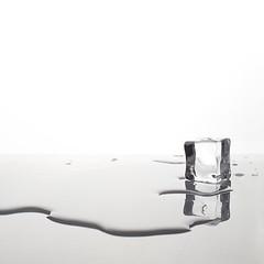 Ice (Francesco Bartaloni) Tags:
