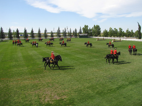 RCMP Musical Ride warm-up