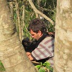 "Rescued Monkey at La Senda Verde <a style=""margin-left:10px; font-size:0.8em;"" href=""http://www.flickr.com/photos/14315427@N00/6161051895/"" target=""_blank"">@flickr</a>"
