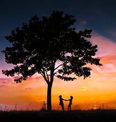 color version (Mi Ko) Tags: trees friends tree love colors true sisters nikon colorful niceshot friendship bume potential silhoutte baum freunde freundschaft farbig liebe farben geschwister wahrheit farbenfroh bearbeitet vertrauen menschlichkeit vetrauen musictomyeyeslevel1