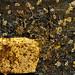 constel.lació 1. pintura de grifoll