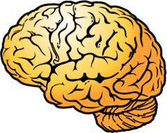brain-intro.gif