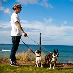 Ozzi man and dogs (koleszafoto) Tags: people dog men beach fashion model melbourne austral ozzi bellsbech