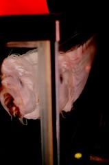 Oar fish (katehind) Tags: hongkong stanley oarfish