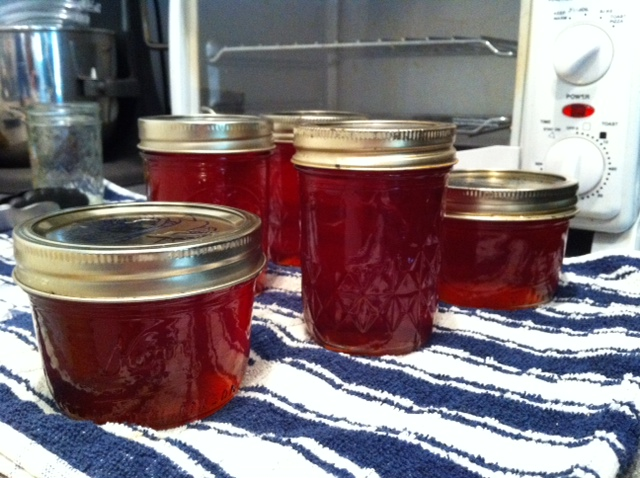 Rosy Quince Jelly