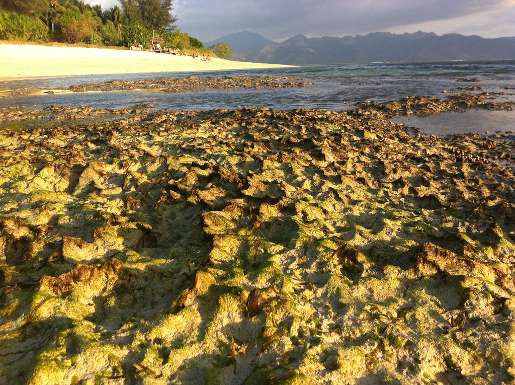 Low tide mountain ranges, Gili Air, Lombok, Indonesia