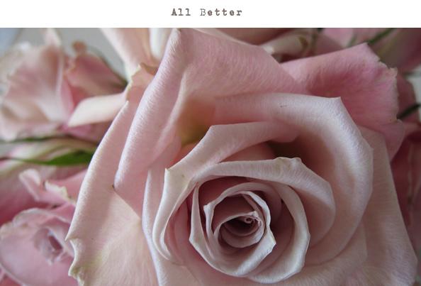 roses-all-better