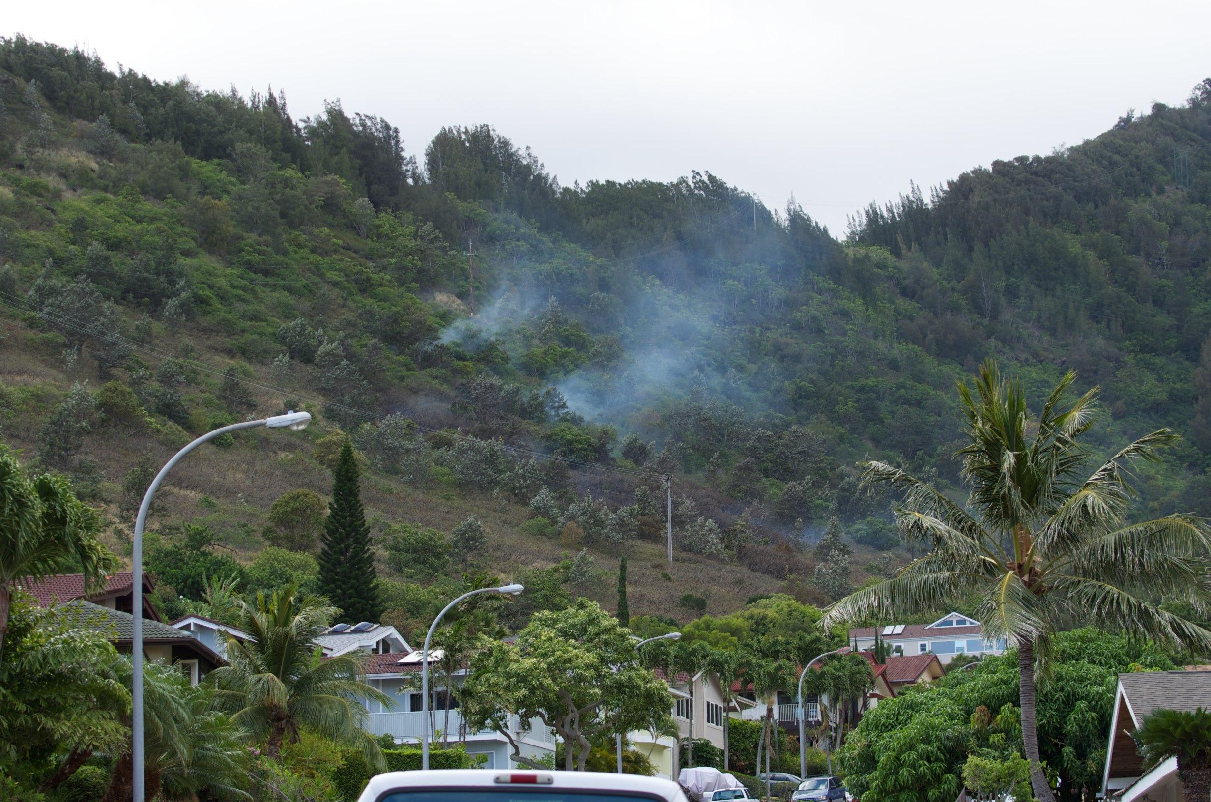 我家後山著火(DA*60-250)