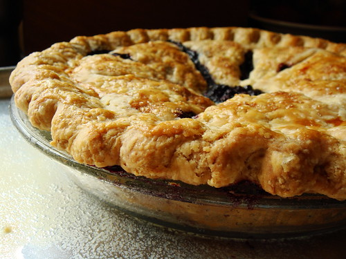Wild Blueberry Pie Perfection