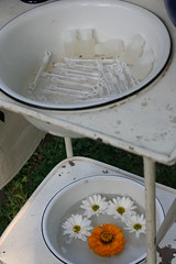 Wash stand - bubbles, flowers & programs