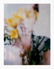 Flower me (jear) Tags: flowers selfportrait colour film polaroid doubleexposure iso instant fujifilm 100 bouquet floralarrangement fp100c
