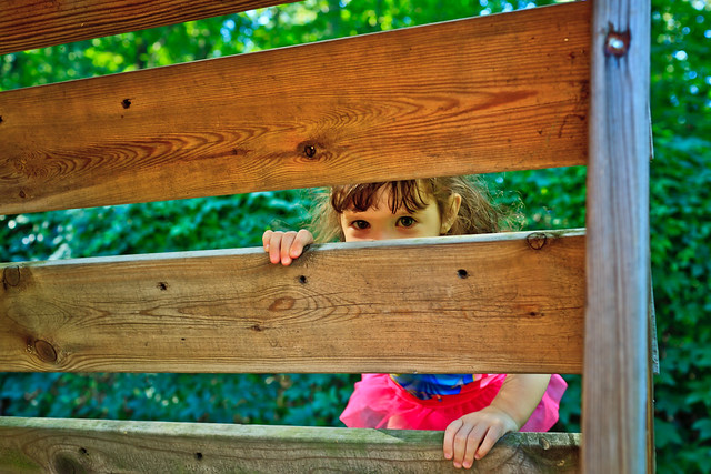 234/365 - August 22, 2011 - Climbing the Ladder