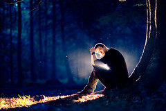 (andrew evans.) Tags: lighting morning trees light summer portrait england tree nature forest self one kent woods nikon bokeh f14 flash 85mm ethereal emotional wonderland magical d3 strobe strobist sb900