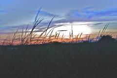 (k.johannajoyce) Tags: ocean light sea sky color beach colors beauty grass evening coast rainbow cove maine kettle boardwalk backdrop seagrass palette