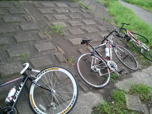 初の三人サイクリングなう。まーくん、にっちゃん、ぴぴ。