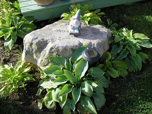 Reading garden gnome 1