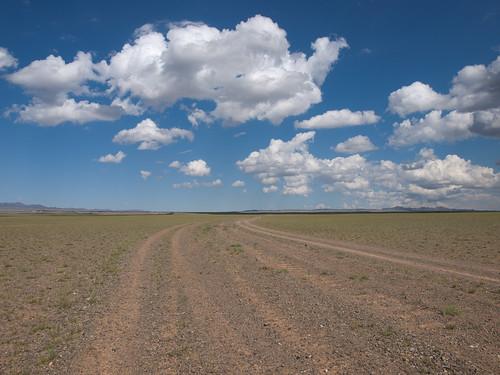 Desierto del Gobi 40