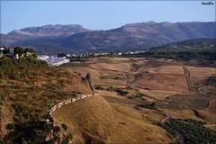 (David Fernndez Molina) Tags: parque naturaleza paisaje ronda barranco andalucia malaga davidfm