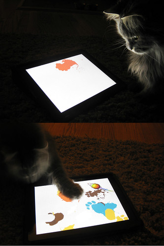 iPad for cats