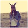 Band of Foxes (Carlos Sadness) (carlossadness) Tags: shinoflow