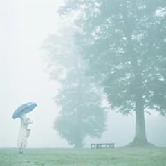 * (fangchun15) Tags: 120 6x6 mamiya tlr c220 film japan kodak 群馬 portra400 霧 たんばらラベンダーパーク