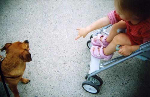 Gracie meets little girl