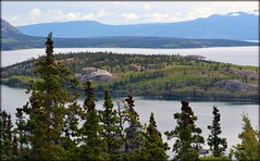 Klondike Highway - Bove Island (blmiers2) Tags: travel mountain mountains nature alaska landscape nikon klondikehighway boveisland d3100 blm18 blmiers2
