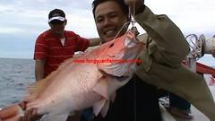 20100604 (fymac@live.com) Tags: mackerel fishing redsnapper shimano pancing angling daiwa tenggiri sarawaktourism sarawakfishing malaysiafishing borneotour malaysiaangling jiggingmaster