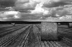 """bales (Foide) Tags: bw film finland apx100 bales blackdiamond vaasa vasa xtol kiev4 söderfjärden """"flickraward"""""""