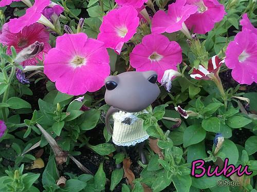 Hoy ha llegado Bubu by tatadelacasa
