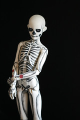 skeleton boy (Kittytoes) Tags: skeleton skull mono tattoos bones bjd anatomical commissions limhwa melancholykitties limho