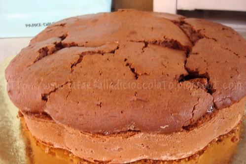 Torta allo Yogurt con Cacao e marmellata di Arance amare 2