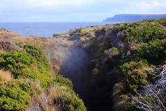 Maingon Blowhole, A Look towards the Sea and Cape Raoul (Trains In Tasmania) Tags: nature australia bushwalking tasmania caperaoul tasmanpeninsular maingonblowhole