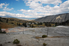 Yellowstone NP trip Photo
