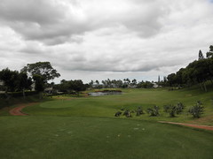 WAIKELE COUNTRY CLUB 066