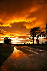 "Northwood end road, Bedfordshire. ""Explored"" (Nigel Blake, 2 million views Thankyou!) Tags: road pink blue ireland sunset sky orange cloud wet water rain weather canon landscape puddle shower fire photography glow sundown dusk bedfordshire end 20mm blake puddles nigel northwood fiery downpour between meteorology haynes eos1dsmkiii"