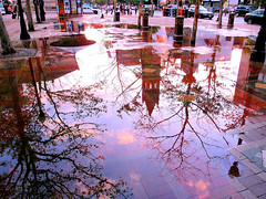 Puddle (brooksbos) Tags: city trees summer sky urban reflection church rain boston skyline clouds reflections geotagged ma puddle photography photo day afternoon mr newengland olympus bostonma backbay copleysquare bostonist masschusetts lurvely 02116 thatsboston regionwide xz1 brooksbos