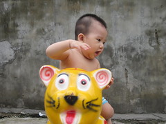 Hổ con đáng yêu (Pham Thu Trang) Tags: minh con bình đáng yêu hổ ngô
