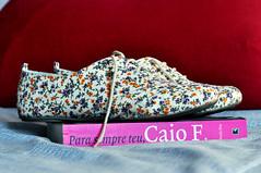 365 Project - 164/365 (natlianambara) Tags: oxford livro sapato caiof