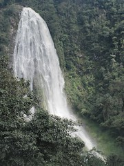 . (Nelson Luiz Wendel) Tags: water gua waterfall rainforest wasser do wasserfall air maji paisagem rapids talon tropical slap foss juga cascade cenrio floresta cachoeira ya terjun ecoturismo   cascada joinville  cascata vesiputous eas waterval  rhaeadr fervenza vattenfall vodopd elale wodospad  urjauzia vandfald itapocu   vodopad nc mar vzess thc ecossistema krioklys maporomoko serra mata atlntica denskritums lal   ujvar    regenwaldt    catarracta  kaskad