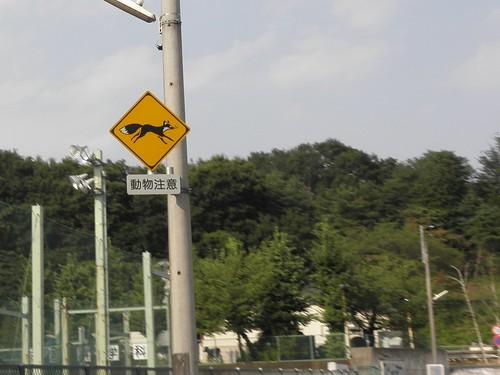標識 瑞穂町 キツネ